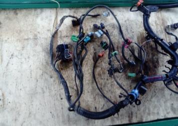 Проводка коса моторная Citron C 5 01-05г 2.2 D